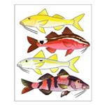 Four Indo-Pacific Goatfish Posters