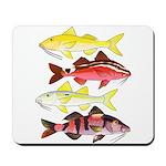 Four Indo-Pacific Goatfish Mousepad