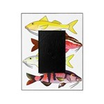 Four Indo-Pacific Goatfish Picture Frame