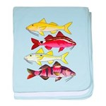 Four Indo-Pacific Goatfish baby blanket