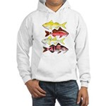 Four Indo-Pacific Goatfish Hoodie