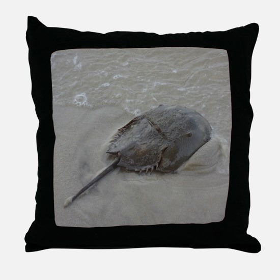 Cool Beach house Throw Pillow
