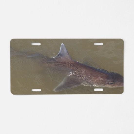 Cute Shark fishing Aluminum License Plate