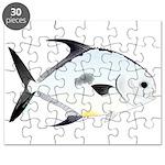 Permit v2 Puzzle