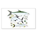 Atlantic Flats Big 3 Sticker