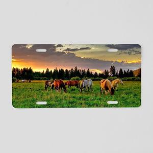 Horses Grazing Aluminum License Plate