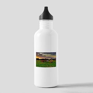 Horses Grazing Water Bottle