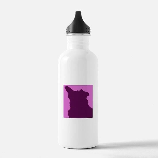 Cute Chihuahua mix Water Bottle