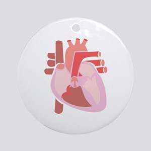 Human Heart Ornament (Round)