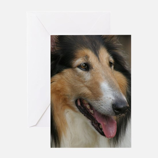 Collie Photography Greeting Card