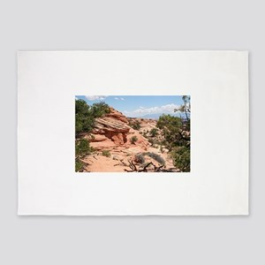 Canyonlands National Park, Utah, US 5'x7'Area Rug