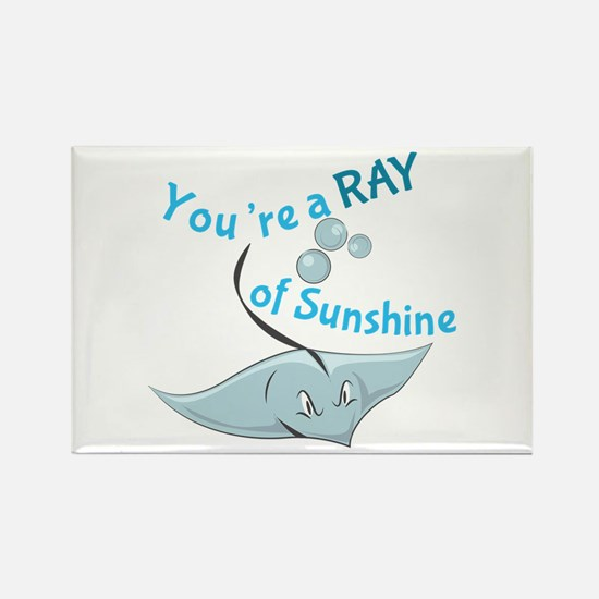 You're A Ray Of Sunshine Magnets