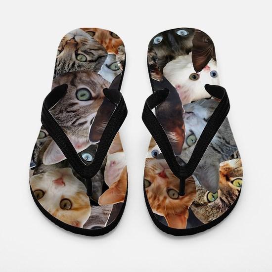 Kitty Collage Flip Flops