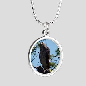Hawk Silver Round Necklace
