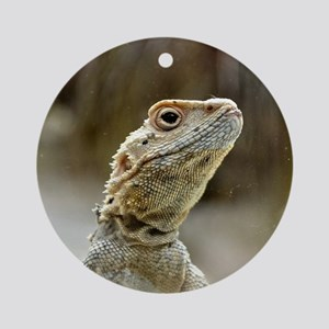nosy Lizard Ornament (Round)