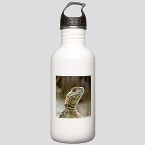 nosy Lizard Stainless Water Bottle 1.0L