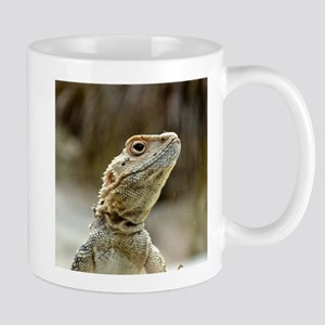 nosy Lizard Mugs
