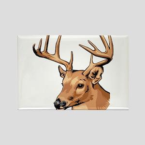 Deer Magnets