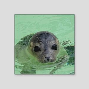 sweet SEAL Sticker