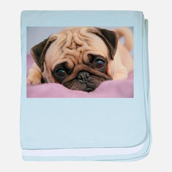 Pug Puppy baby blanket