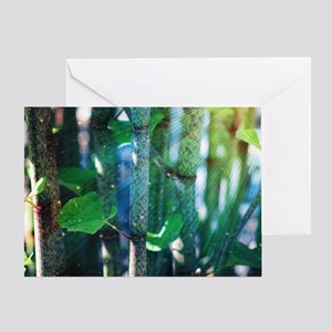 Exotic Plant Greeting Card