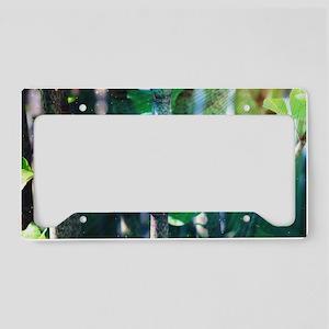 Exotic Plant License Plate Holder