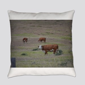 Cows Everyday Pillow