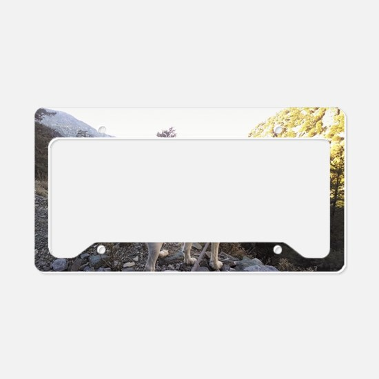 Brittany Spaniel Hiking License Plate Holder