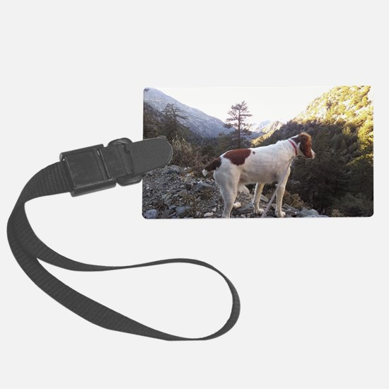 Brittany Spaniel Hiking Large Luggage Tag
