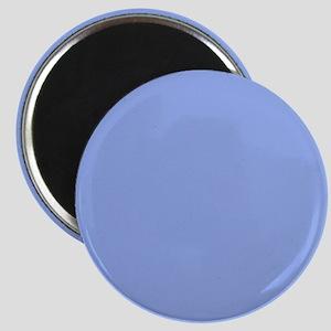 Solid Light Blue Magnets