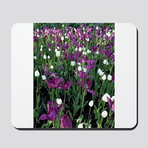 Purple & White Tulips Mousepad