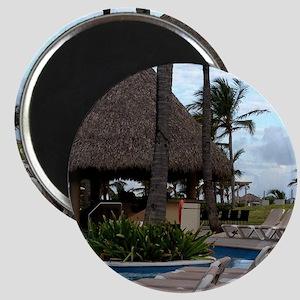 Punta Cana, Dominican Republic Magnet