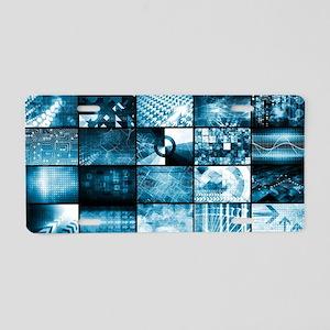 Integrated Management Aluminum License Plate