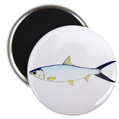 Milkfish Magnets