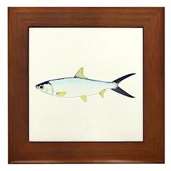 Milkfish Framed Tile