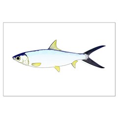 Milkfish Posters