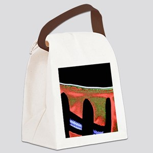 Abstract Glove Canvas Lunch Bag