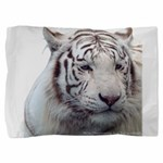 DisappearingTigerWhLG2 Pillow Sham