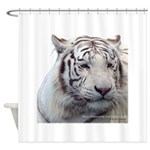 DisappearingTigerWhLG2 Shower Curtain