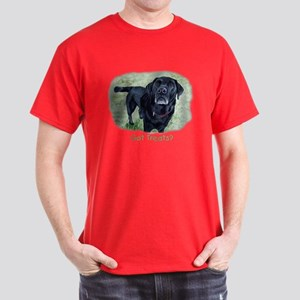 Got Treats? Lab Dark T-Shirt