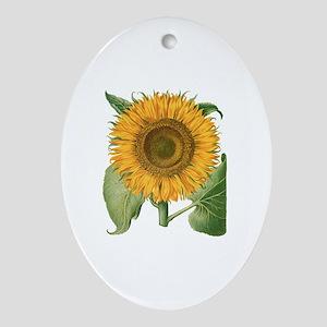 Vintage Sunflower Basilius Besler Ornament (Oval)