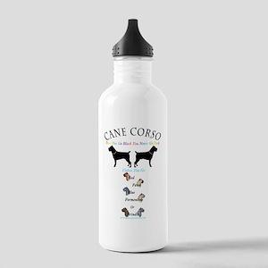 design 18 Water Bottle