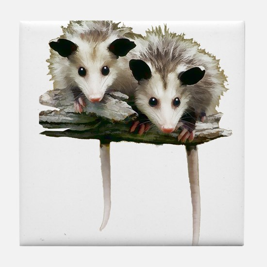 Baby Possums on a Branch Tile Coaster