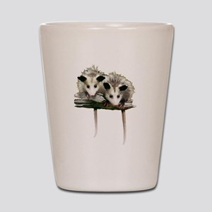 Baby Possums on a Branch Shot Glass