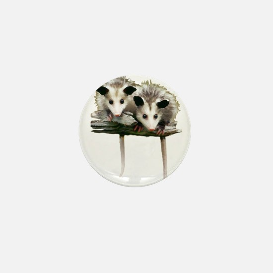 Baby Possums on a Branch Mini Button