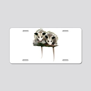 Baby Possums on a Branch Aluminum License Plate