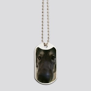 Cute nosey dog Dog Tags