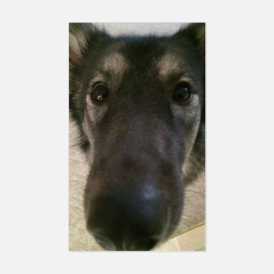 Cute nosey dog Sticker (Rectangle)