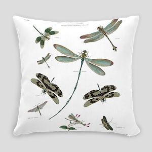 entomology Everyday Pillow