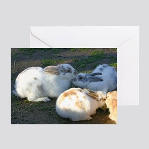 Kissing Bunnies Greeting Cards (Pk of 10)